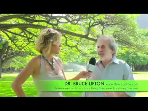 2/2- Dr Bruce Lipton - Révolution de l'évolution et émergence des créatifs culturels.