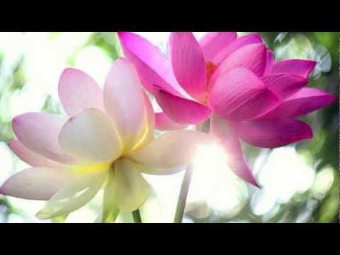 Méditation du sourire et de l'amour intérieur