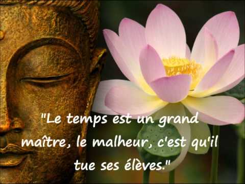 Citations du Bouddha