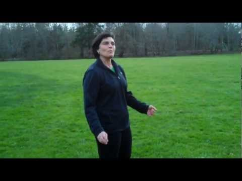 How To Walk Properly by, Dr. Wendy Schauer, D.C., R.K.C.