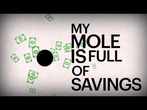 Save Mole Money with Abe & Solavei