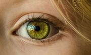 Glanz in meinen Augen - Einführung Gestalttherapie