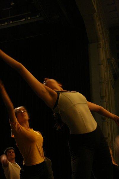 Muestra 2008 ensayo