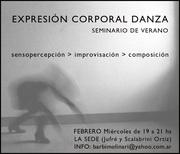 seminario febrero2013 (2)