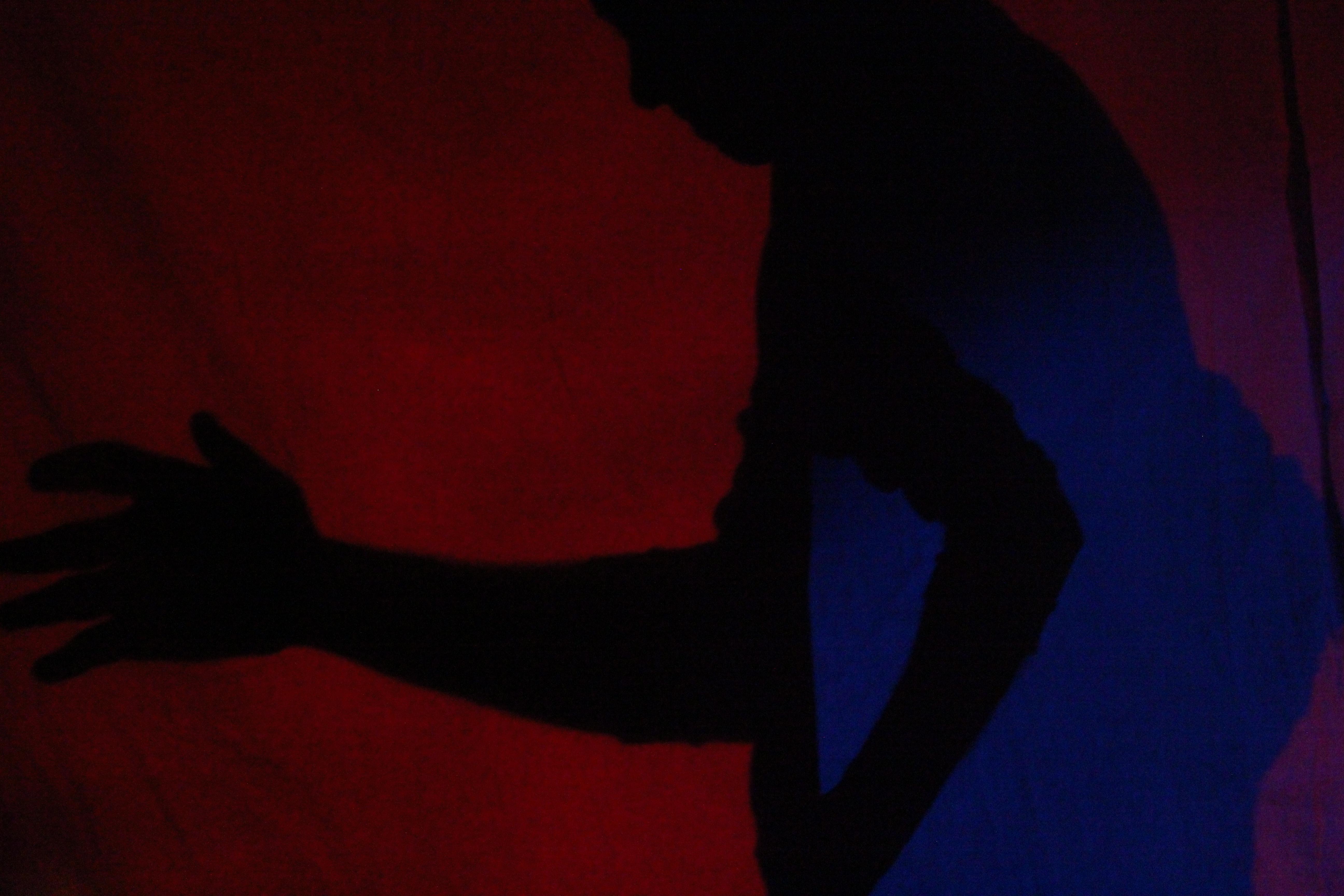Cuerpos, luces y sombras - Seminario Intensivo 2014