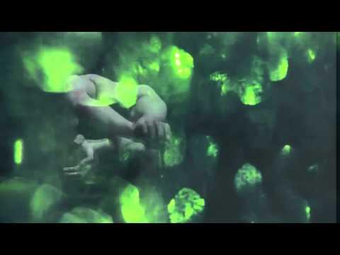 """""""Moth"""" by Muxi for """"WOMEN我們"""" 2012"""