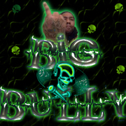 Big Bully Organization