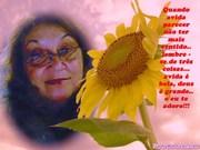 supermolduras_200911010230188zmp
