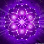 marcelo dalla mandala transmutação