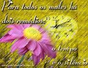 Reflexo_1296081641