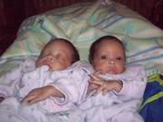 Grandma's newborn twins
