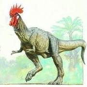 Jack(TyranosaurusChicken)