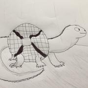 Nate (Waffle Lizard)