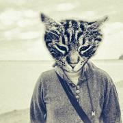 Gašper Školc (Emoji-Cat-Face)