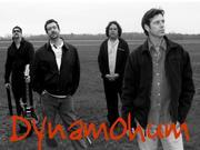 Dynamohum
