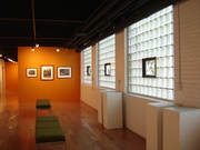 Amy H. Carberry Gallery