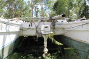 Fringdwella outboard