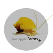 Reefapple