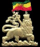 2014-NEW-F LION OF JUDAH FLAG