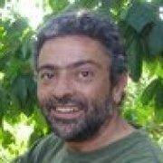 Manuel Rodríguez Feliu