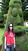 with d'face tree