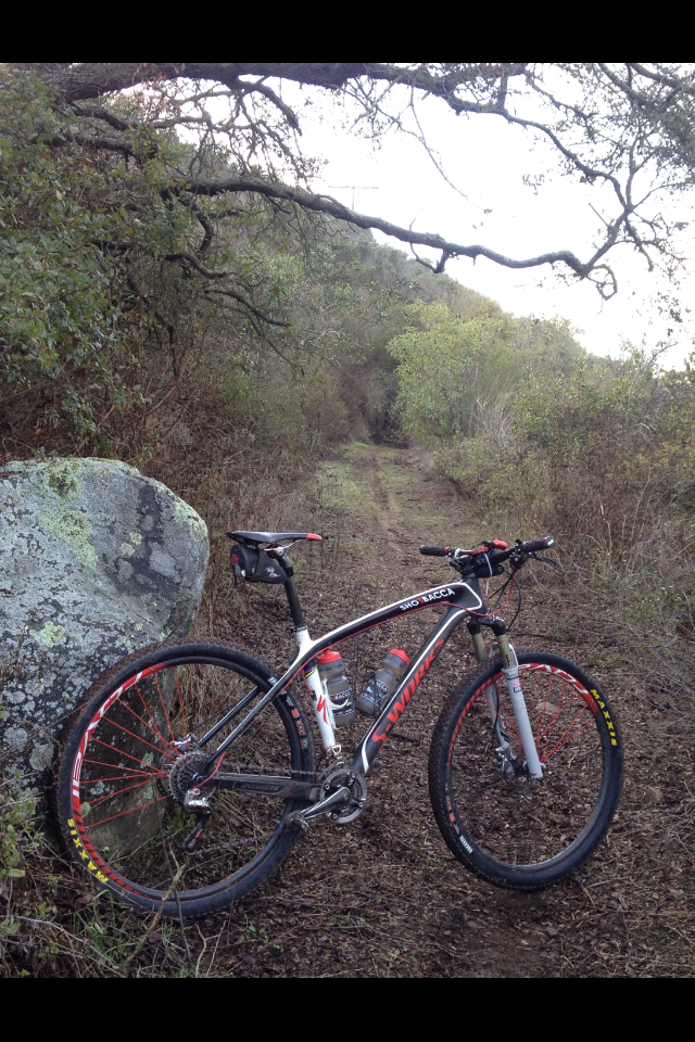 Sweet abandoned old trail, rediscovered.