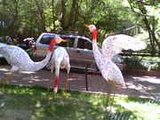 Pune's Zoo