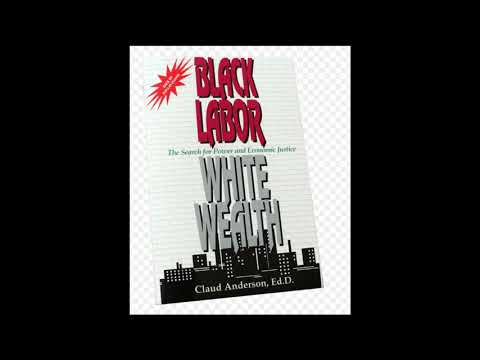 Dr Claud Anderson (Black Labor White Wealth)