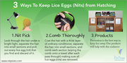 Ways to Keep Lice Eggs From Hatching | NitPixies