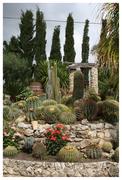 Giardini pensili