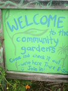 Jane St Community Gardens are looking fantastic!