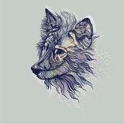 wolfs6