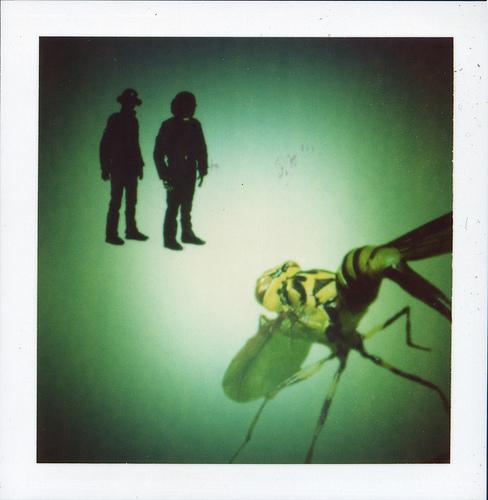 Wasp vs. Daft Punk