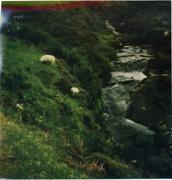 Isola di Skye, Scozia