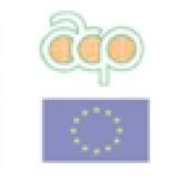 Internet Governance Diplomacy Lithuania: Training Workshop