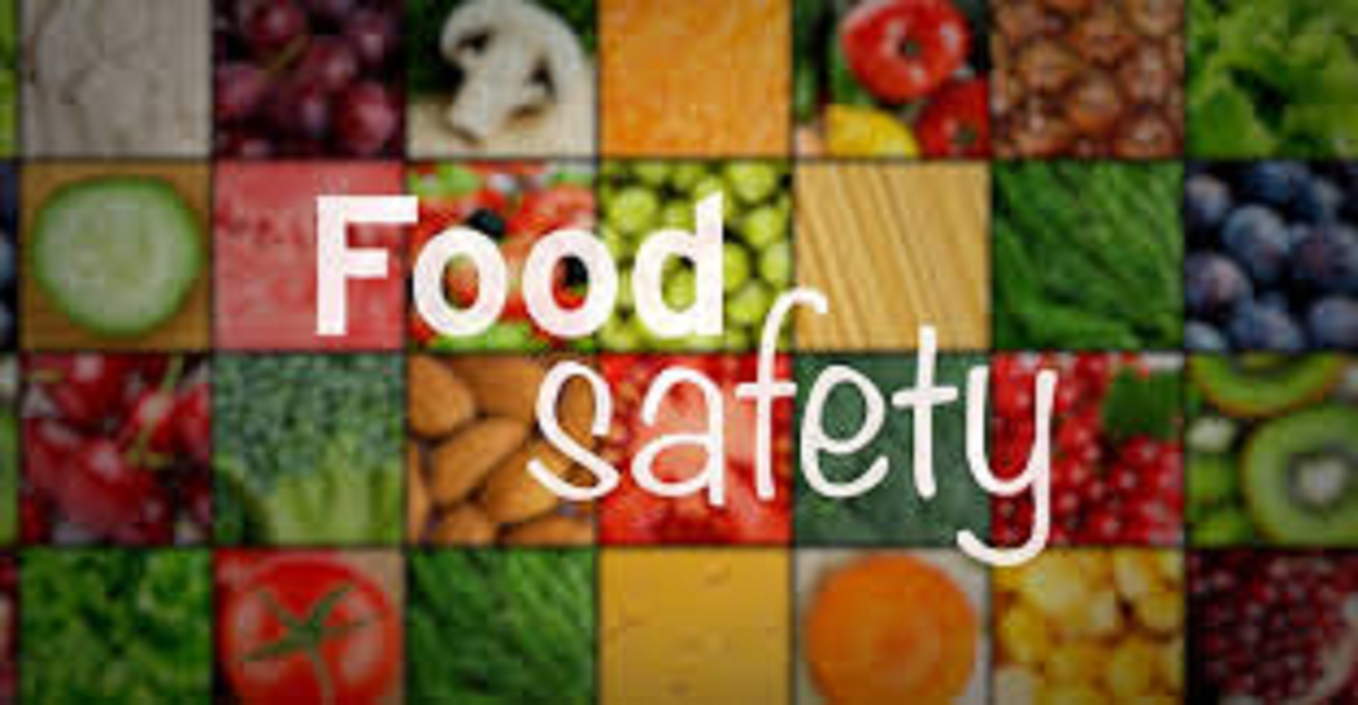 Food safety management training dubai