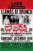 Llamas at Brunch Toys for Tots Concert