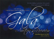 24th Annual Friends of the Fine Arts Center Gala & Auction