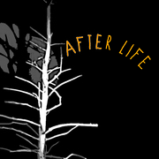 After Life - Closing Luminaria