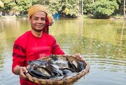 Course: Responsible aquaculture development for food security and economic progress