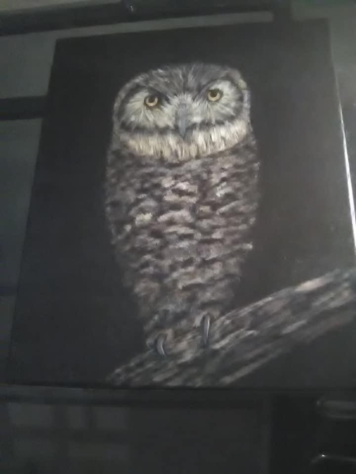 My owl painting .