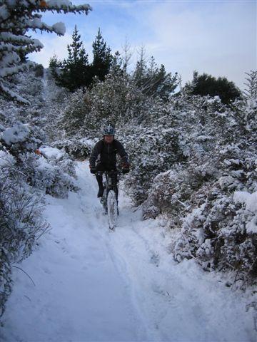 Snow at Signal