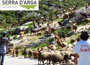 AR LIVRE: Pastor por um dia na Serra D´ Arga