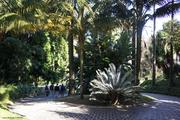 FEIRAS: Feiras no Botânico