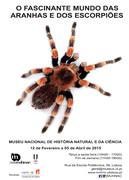 EXPOSIÇÕES: O Fascinante Mundo das Aranhas e dos Escorpiões