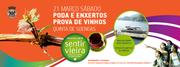 WORKSHOP: Podas e enxertos com prova de vinhos
