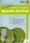 """FESTAS: Apanha do Kiwi - Experimentar, Saborear, Sentir... Felgueiras!"""""""