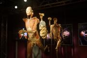EXPOSIÇÕES: Real Bodies – Descubra o Corpo Humano