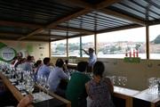 FESTIVAIS: Vinho Verde Wine Fest 2016