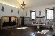 CRIANÇAS: É mesmo um javali? Atividade para famílias no Museu de Lisboa
